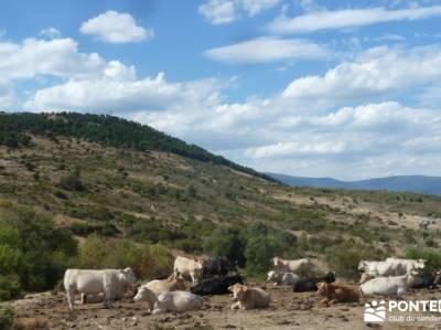 Cabeza de Braña, Mondalindo y Peña Negra - Senderismo por Madrid;ropa de montaña mapa comunidad d